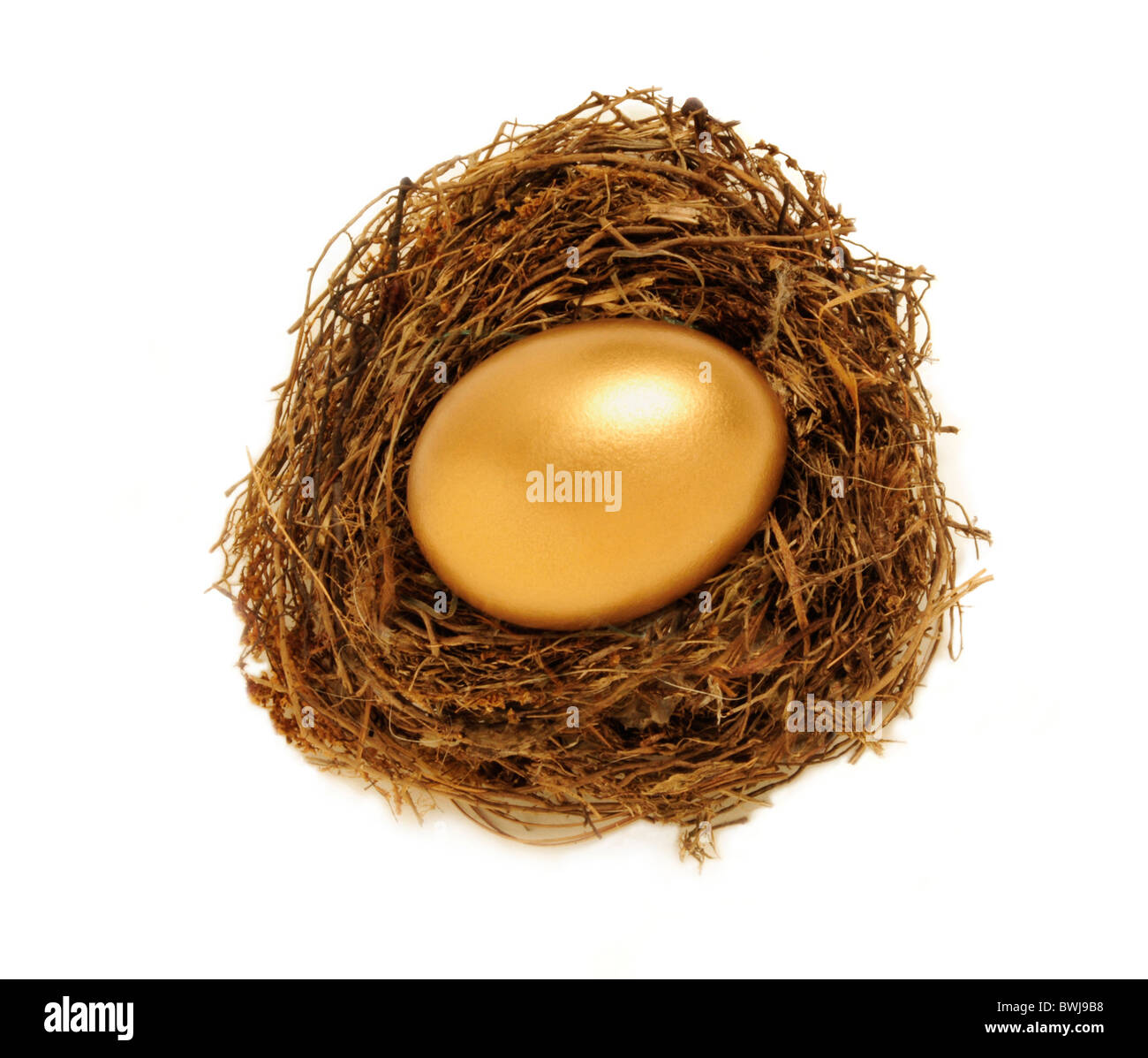 Golden egg in a nest representing retirement savings or security - Stock Image