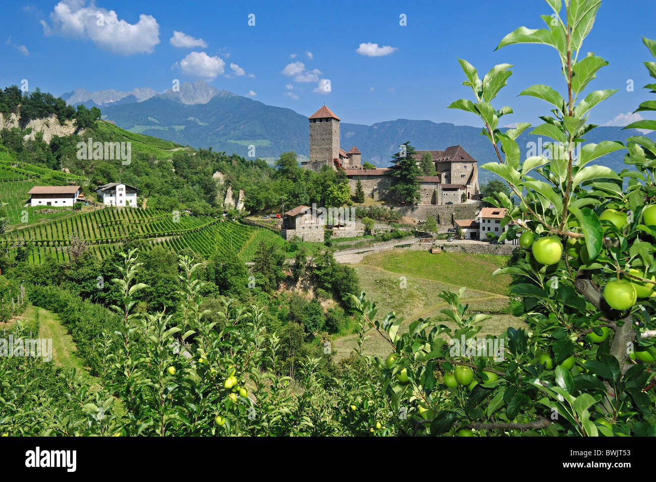 The castle Schloss Tirol and apple orchard at Tirolo / Dorf Tirol, Dolomites, Italy - Stock Image