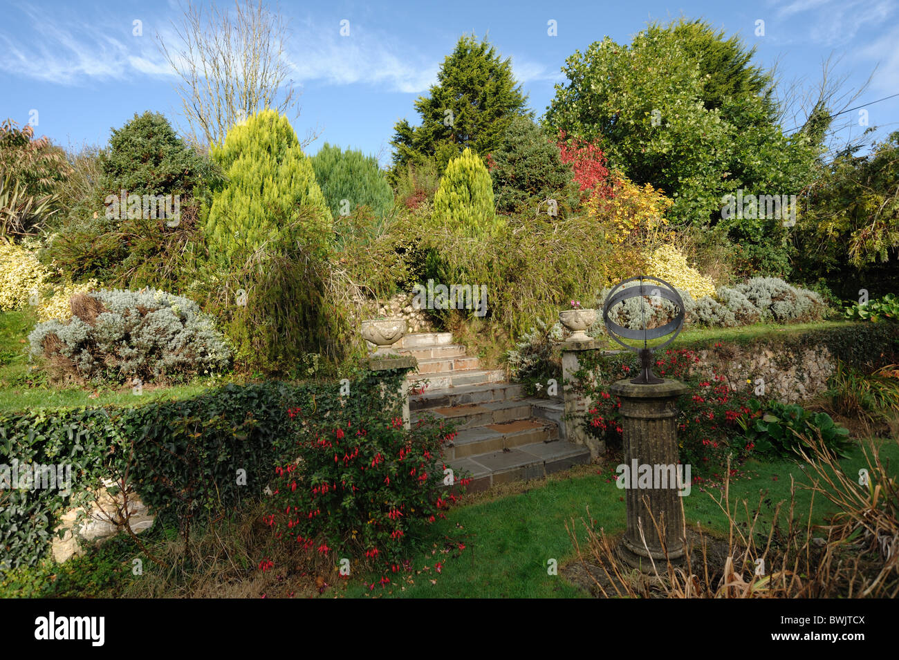 Terraced Devon garden with shrubs and plants in autumn colours - Stock Image