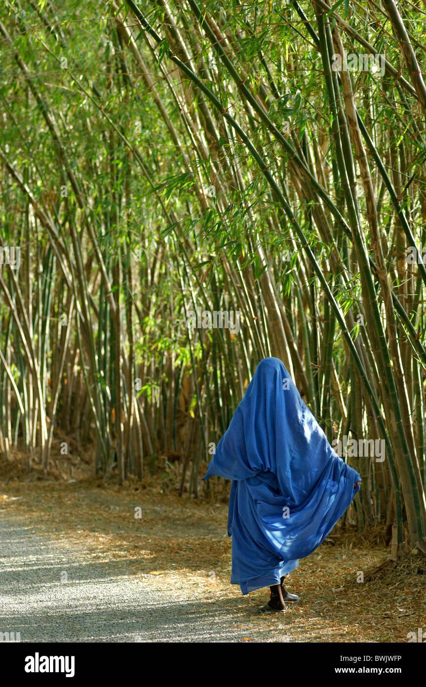 bamboo avenue way woman veils veil Islam Muslims Bamboo avenue hotel gazelle d'Or Taroudannt Taroudant Morocco - Stock Image