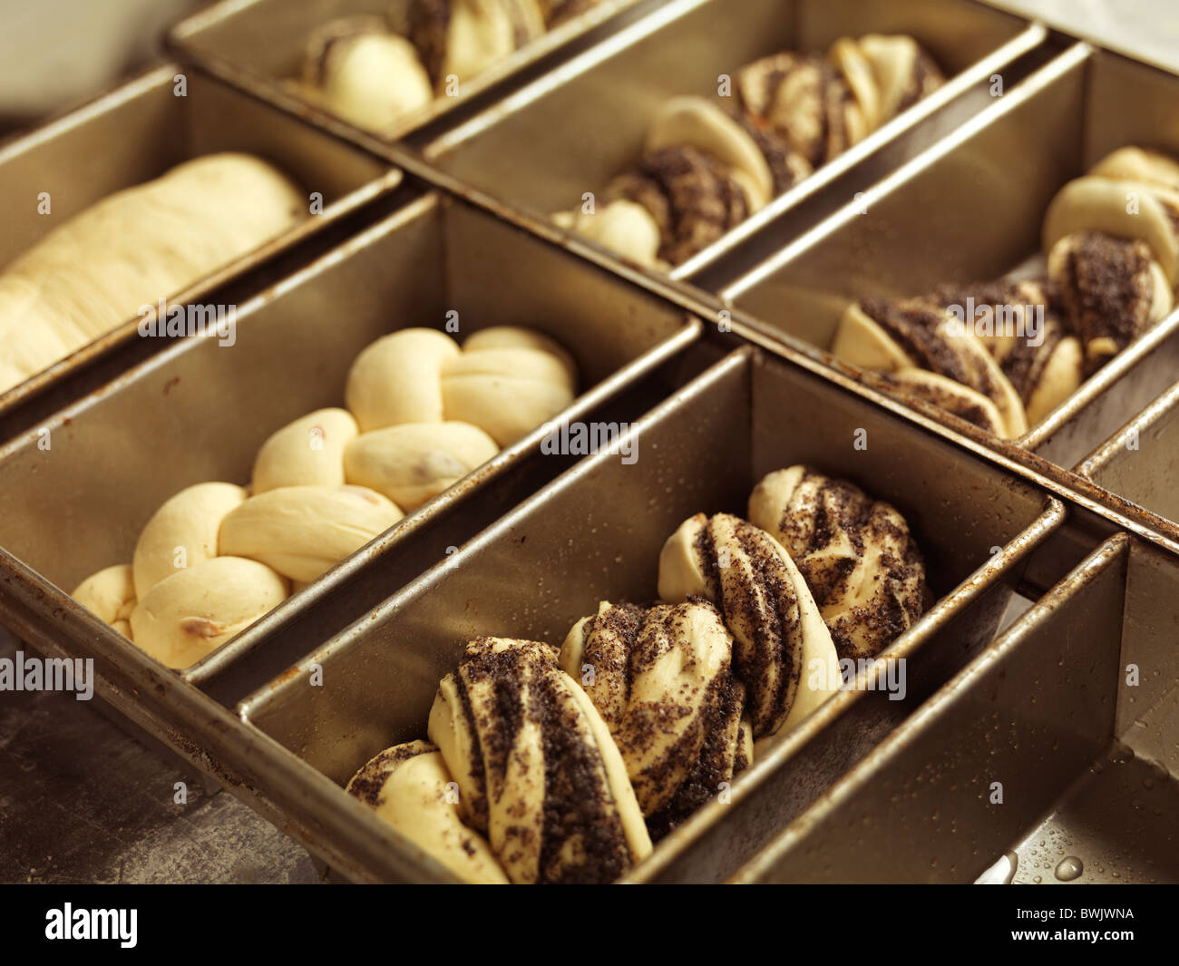Closeup of sweet raw bread in baking tray forms - Stock Image