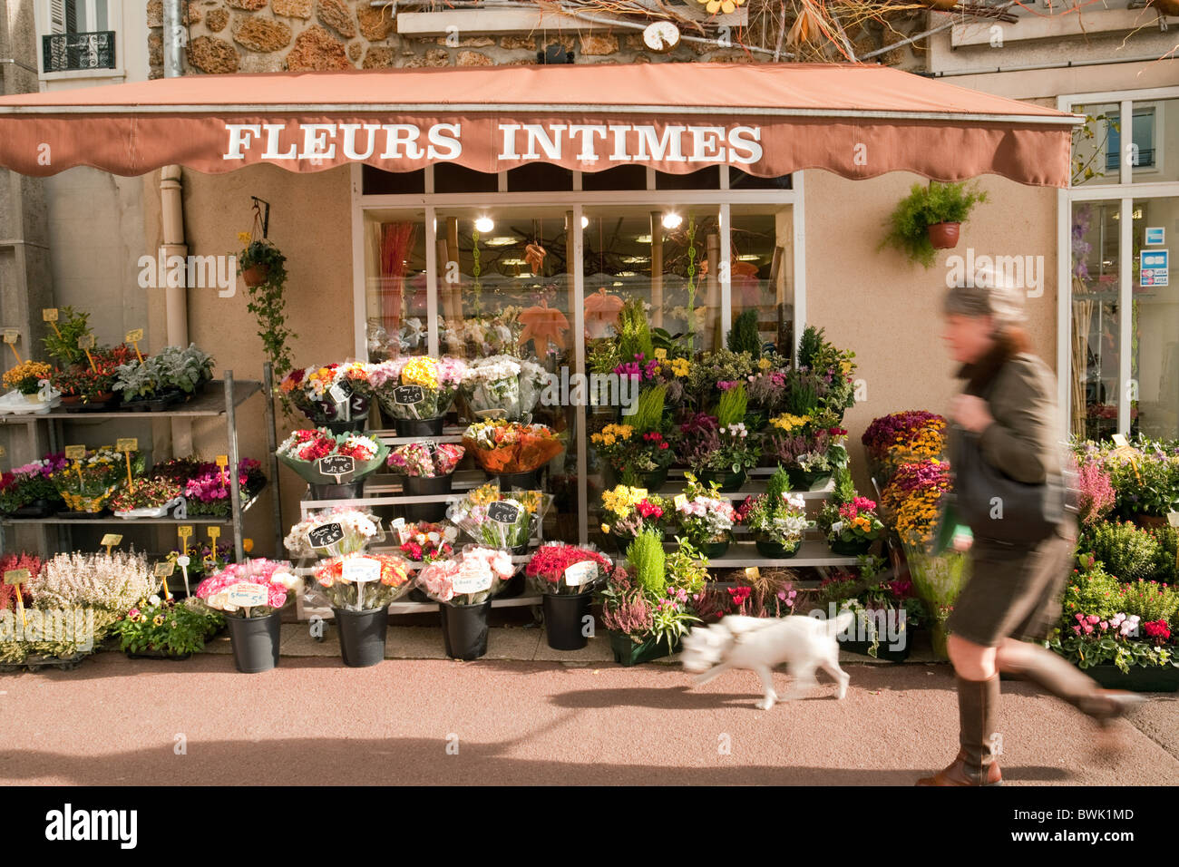 French Flower Shop Stock Photos French Flower Shop Stock