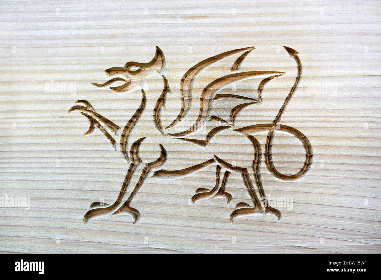 Welsh dragon, national symbol of Wales, carved into grained wood panel - Stock Image
