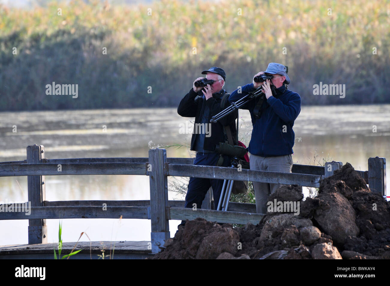Israel, Hula Valley, Lake Agamon Bird sanctuary nature reserve Bird watchers - Stock Image