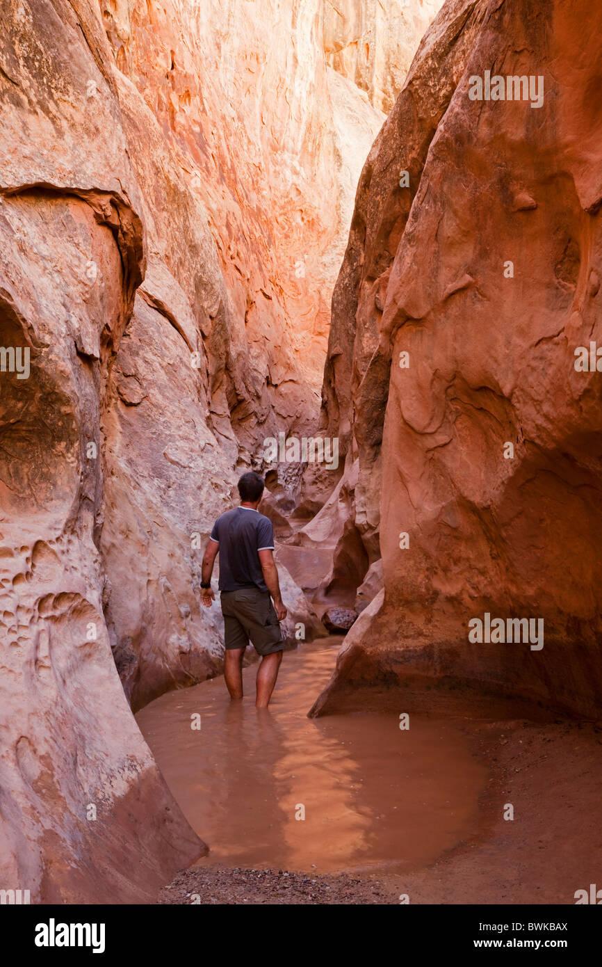 Tourist in Little Wild Horse Canyon, Slot Canyon, San ...