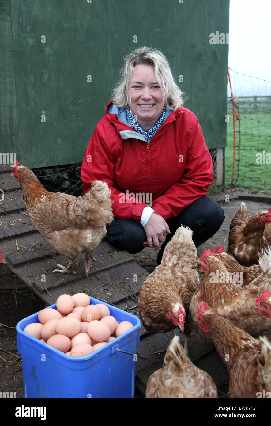 Organic farmer Jenny Young with hens and new-laid eggs, Castlefarm Shop, Co. Kildare - Stock Image