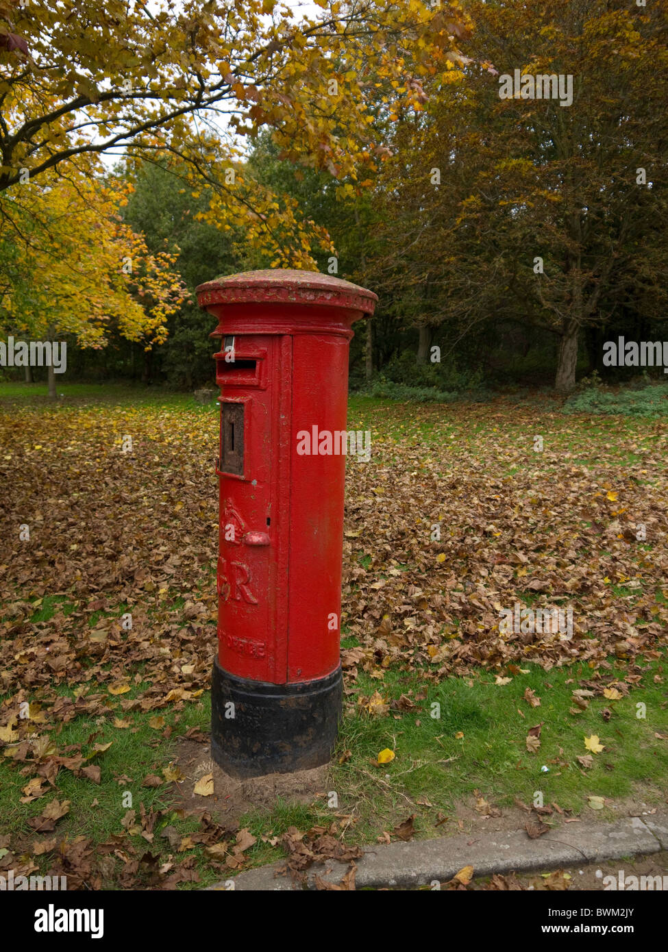 Rural postbox in among the shrubbery and trees - Stock Image