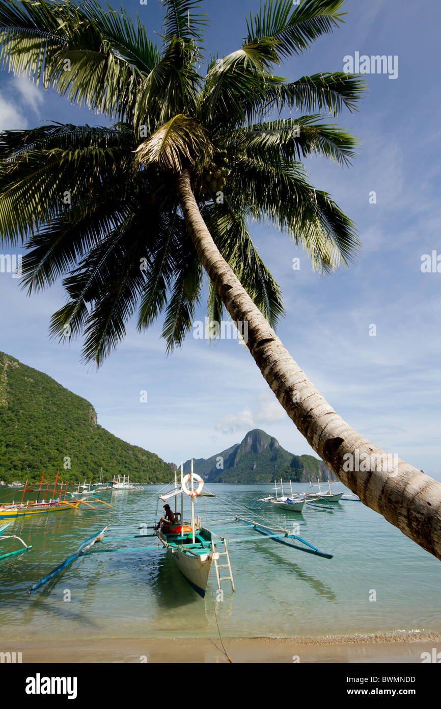 A palm tree leans over a beach with a traditional Philippine bangka boat in the foreground. - Stock Image