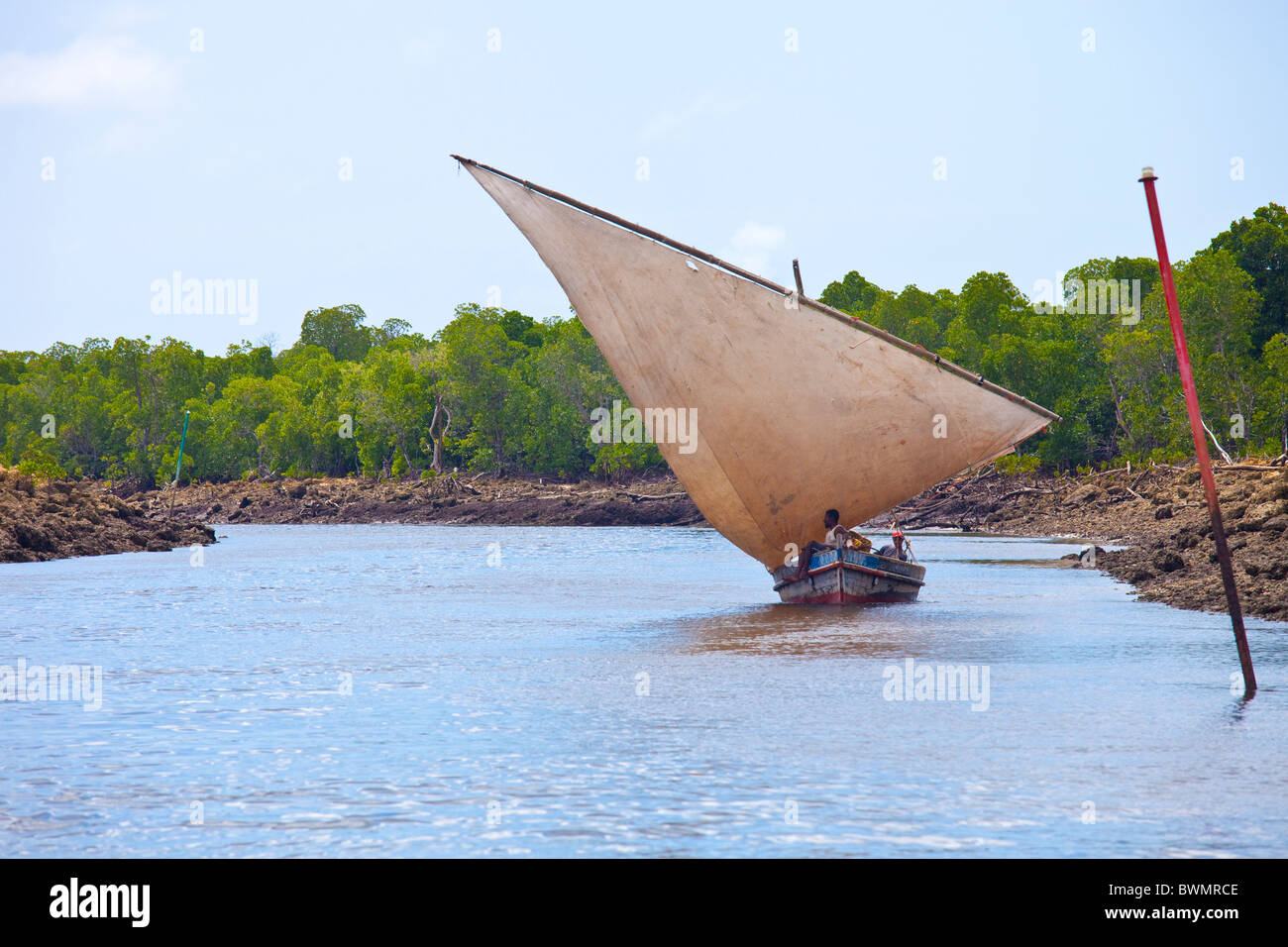 Dhow sailing in a channel off of Lamu Island, Kenya - Stock Image
