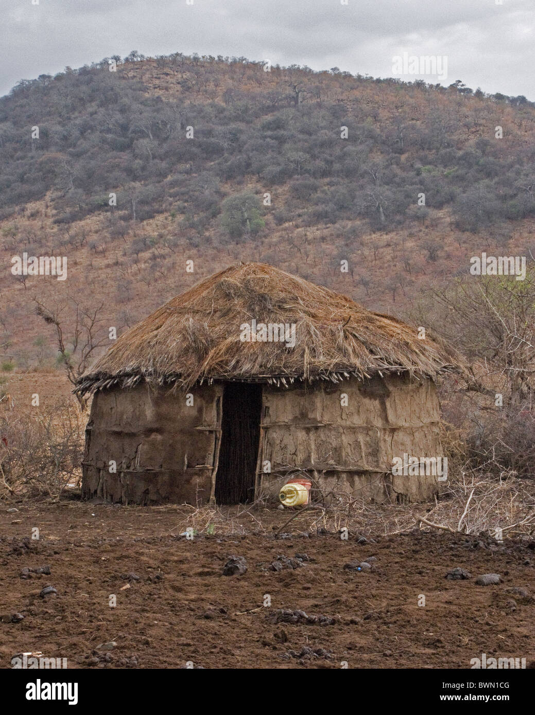 Traditional Masai mud and thatch hut in Tanzania. Stock Photo