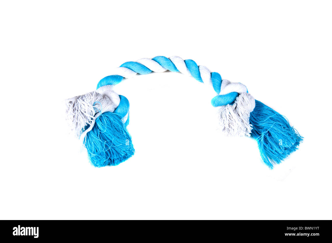 White and blue rope chew toy for dogs and puppies, isolated on a white background - Stock Image