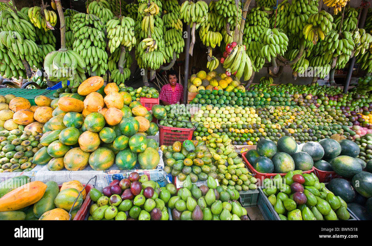 Sri Lanka Asia Kandy City Fruits Shop Fruit Female Vendor Stand Woman Bananas Melons Exotic Tropical