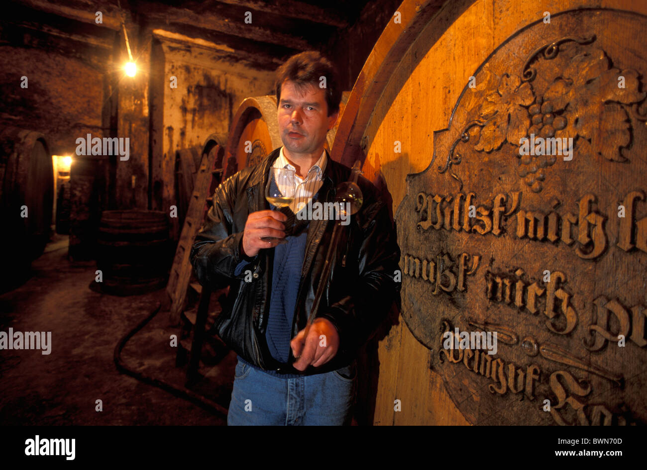 Austria Europe Wine cellar Harald Haimer Poysdorf Niederosterreich Lower Austria vintner winemaker wine cask - Stock Image
