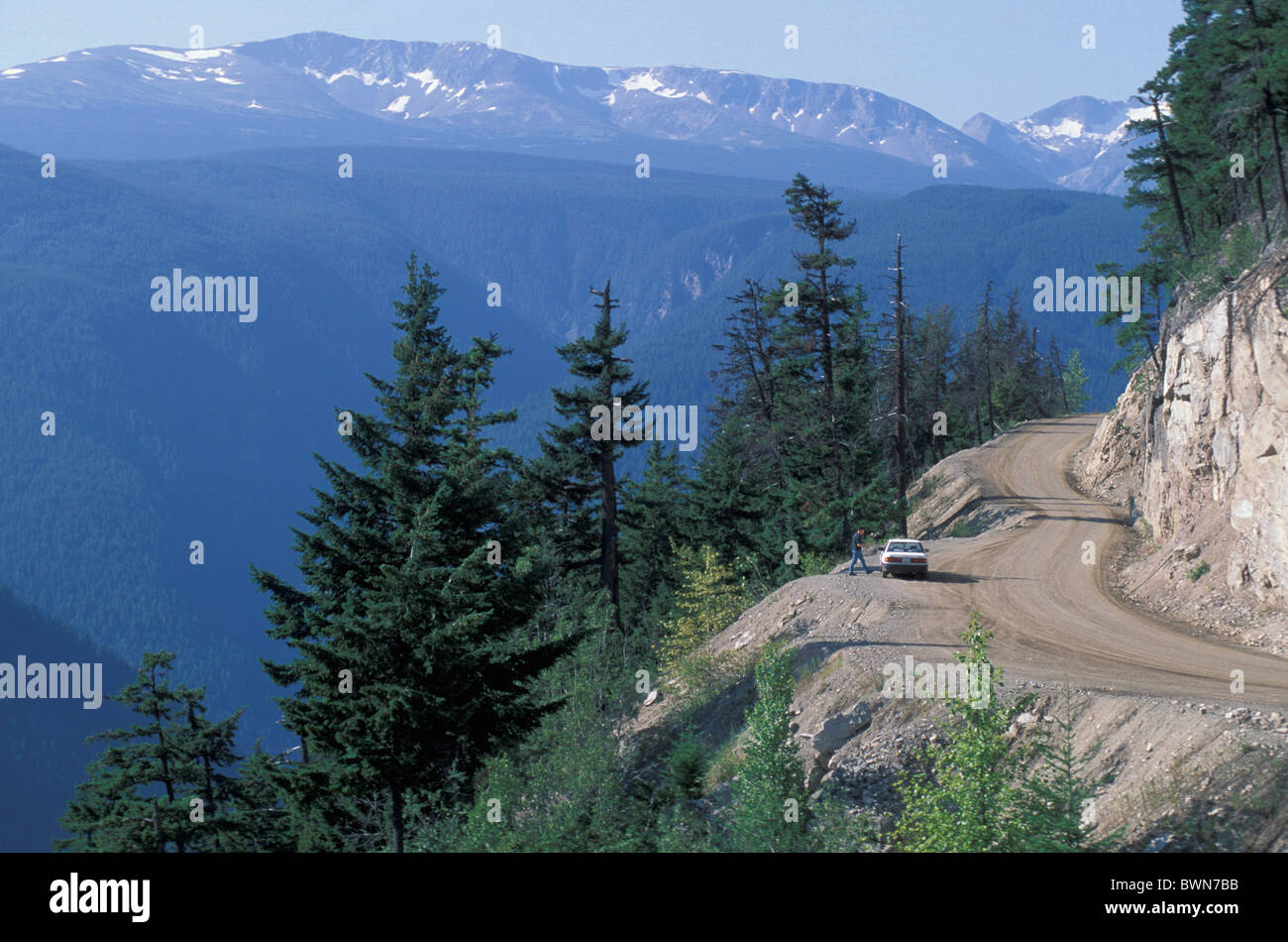 Canada North America America Highway 20 Coast Mountains British Columbia car road street coniferous forest l - Stock Image
