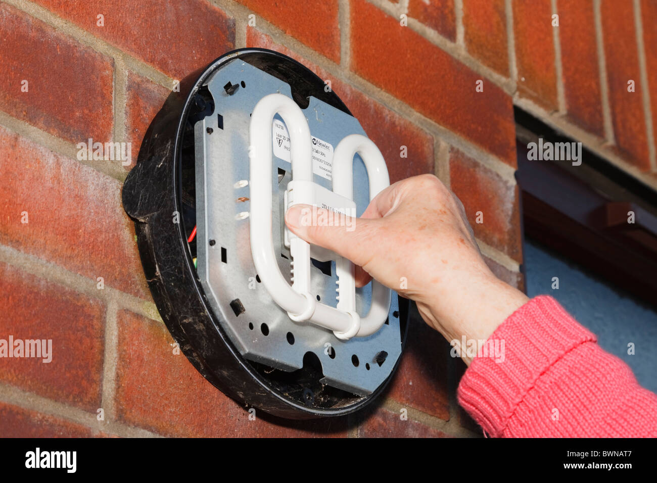 UK, Europe. Person fitting an energy saving CFL 2-pin lamp bulb in an outside light - Stock Image