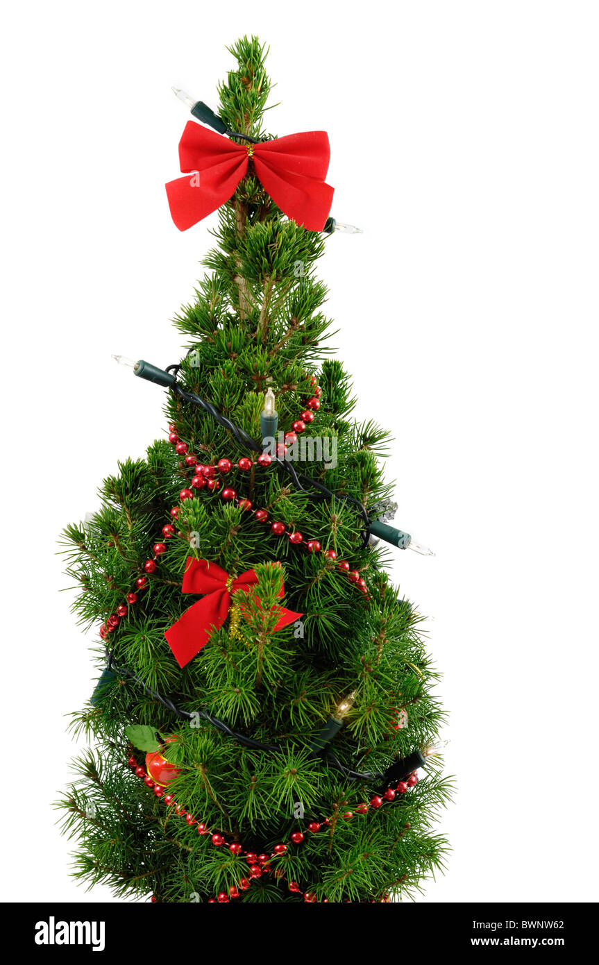 small decorated christmas tree isolated on white background stock image