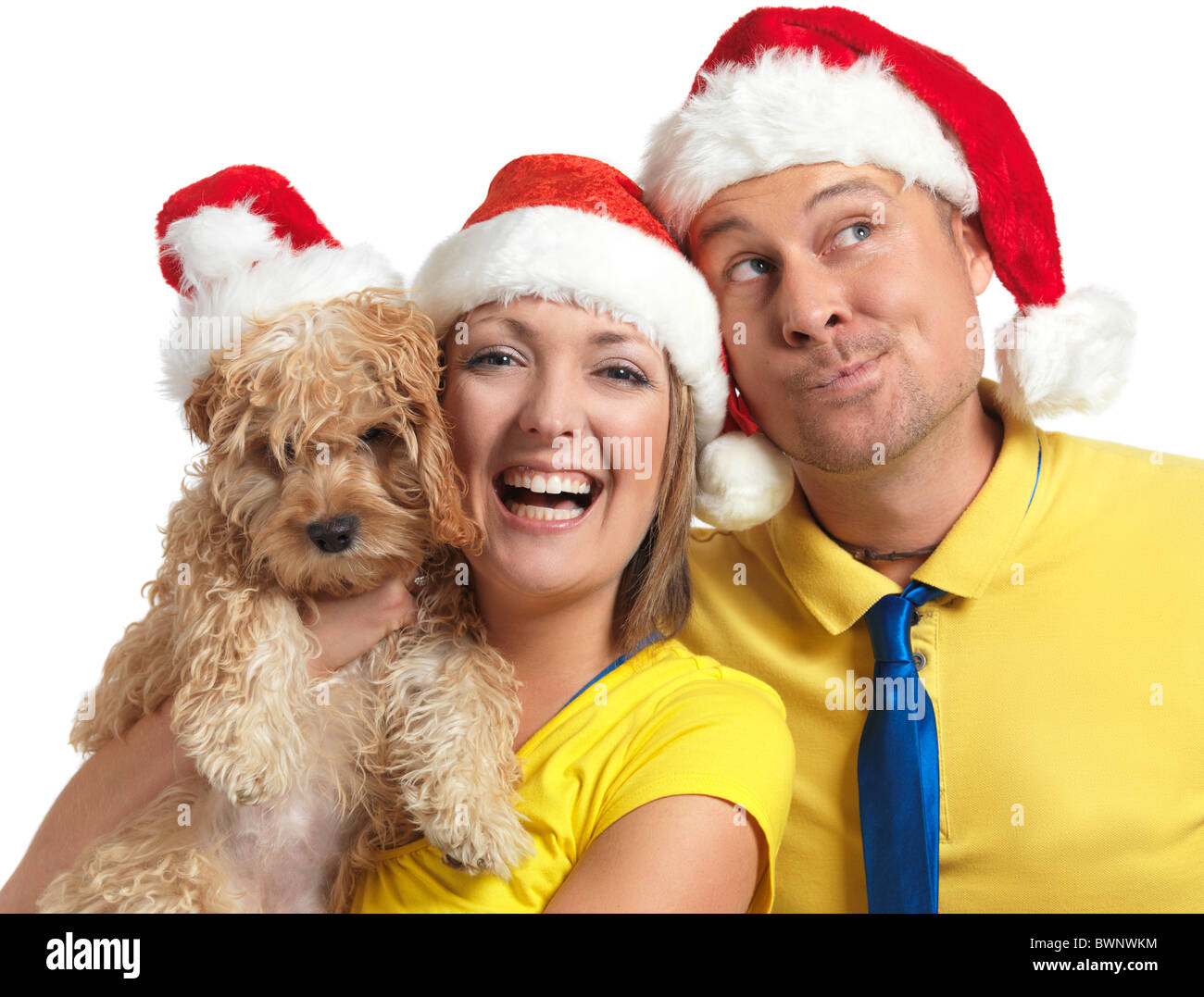 Portrait of a happy young man and a woman with a Cockapoo dog in her hands wearing red Christmas hats. - Stock Image
