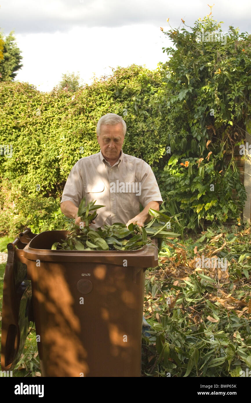A 60 year old man is seen cutting up garden waste and placing it directly into a council recycling bin Stock Photo
