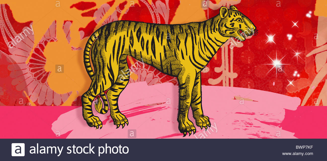 Montage of the Chinese year of the Tiger - Stock Image