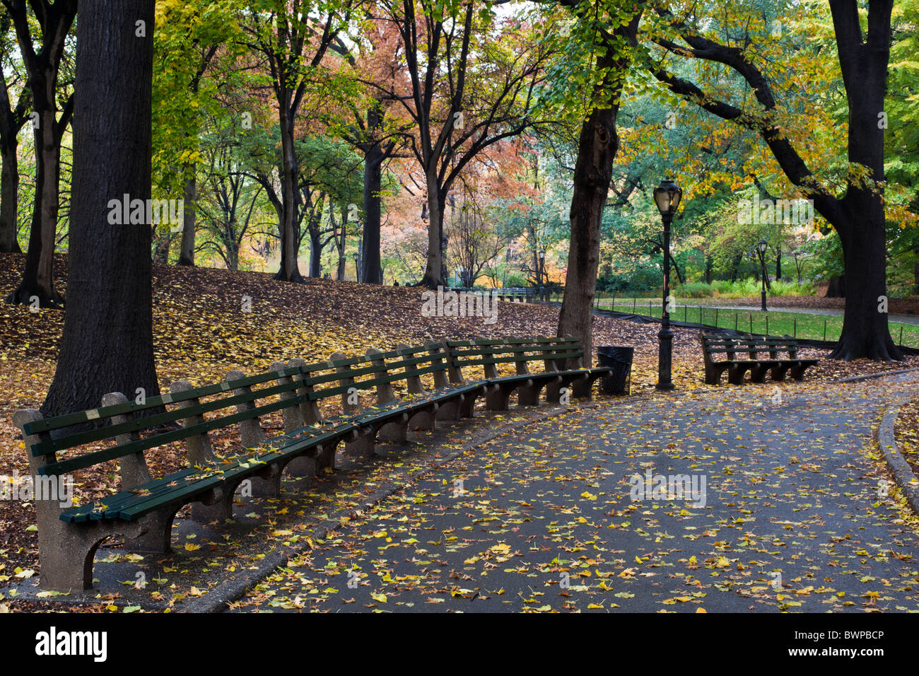 Central Park In Autumn With Sidewalk With Leaves And Park Bench