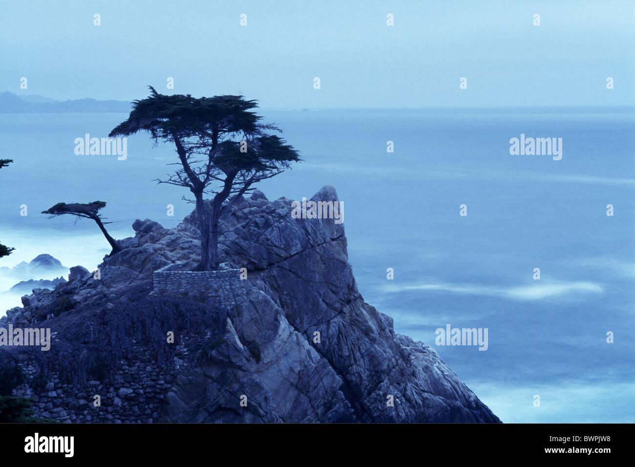 USA America United States North America 17 Mile Drive Highway 1 America California coast calendar landscape - Stock Image