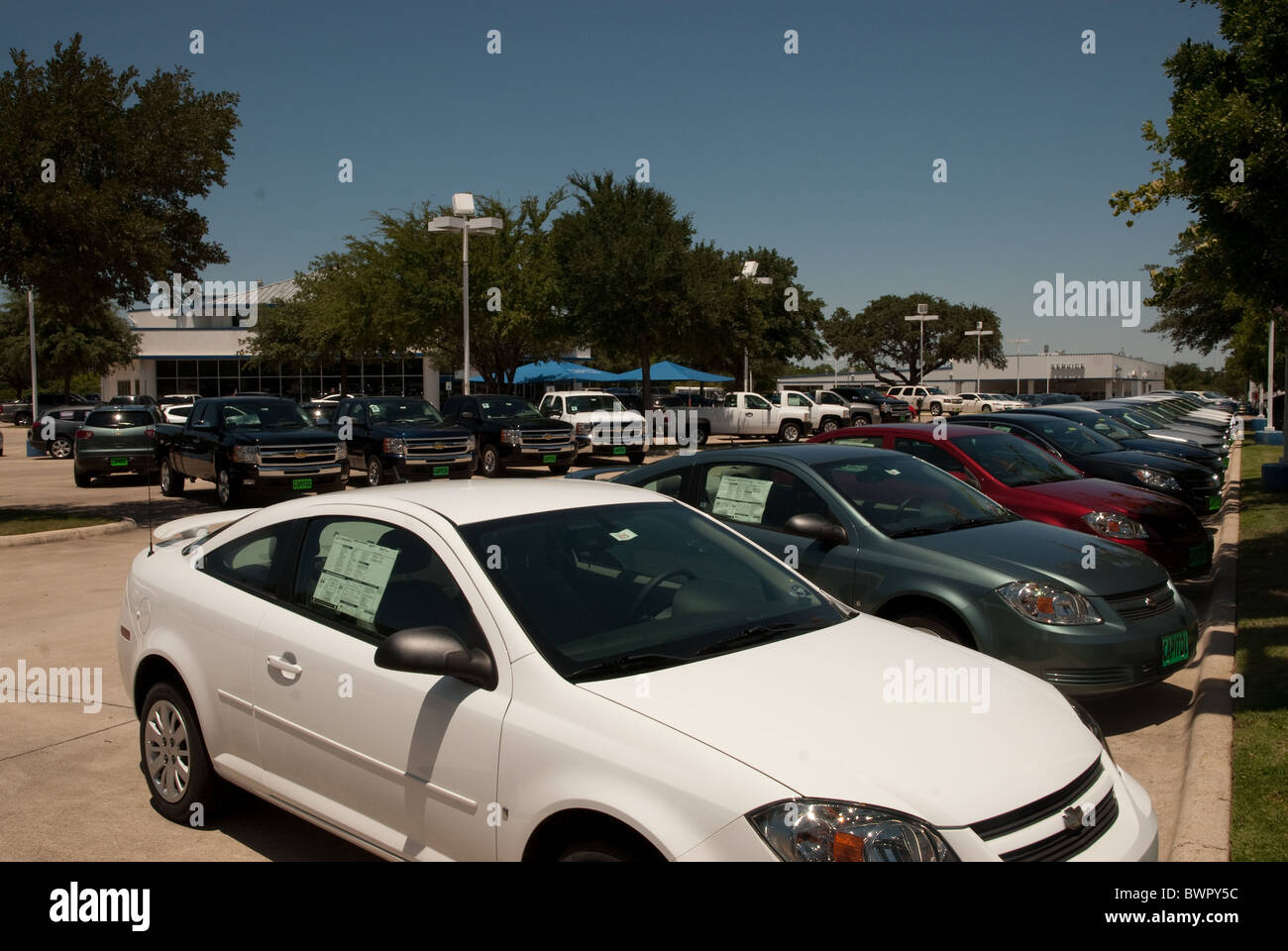 Ford Dealership Austin >> New Cars Parked In A Row At A Ford Dealership In Austin