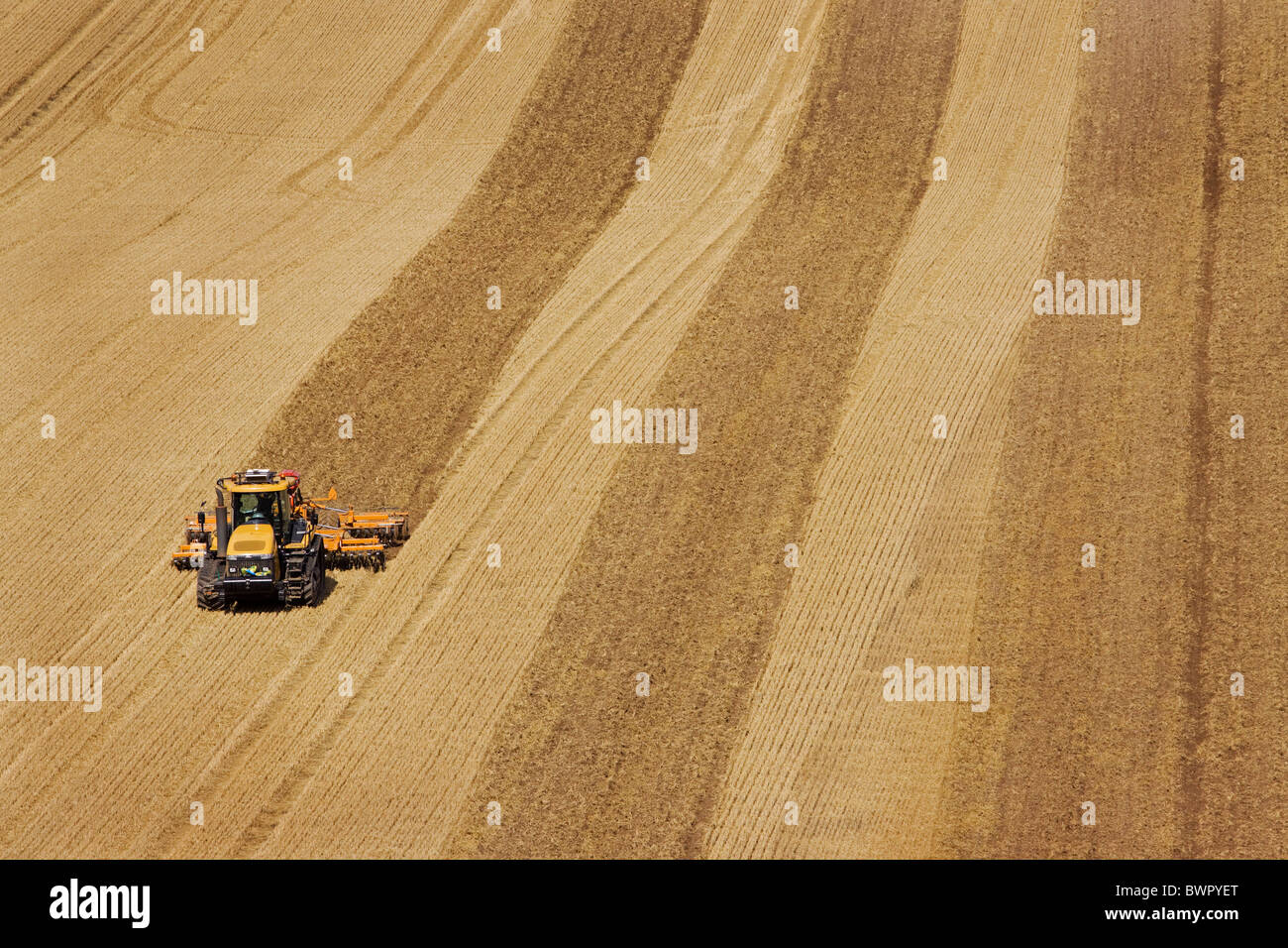 Ploughing Ivinghoe Chiltern Buckinghamshire downlands Chilterns farming - Stock Image