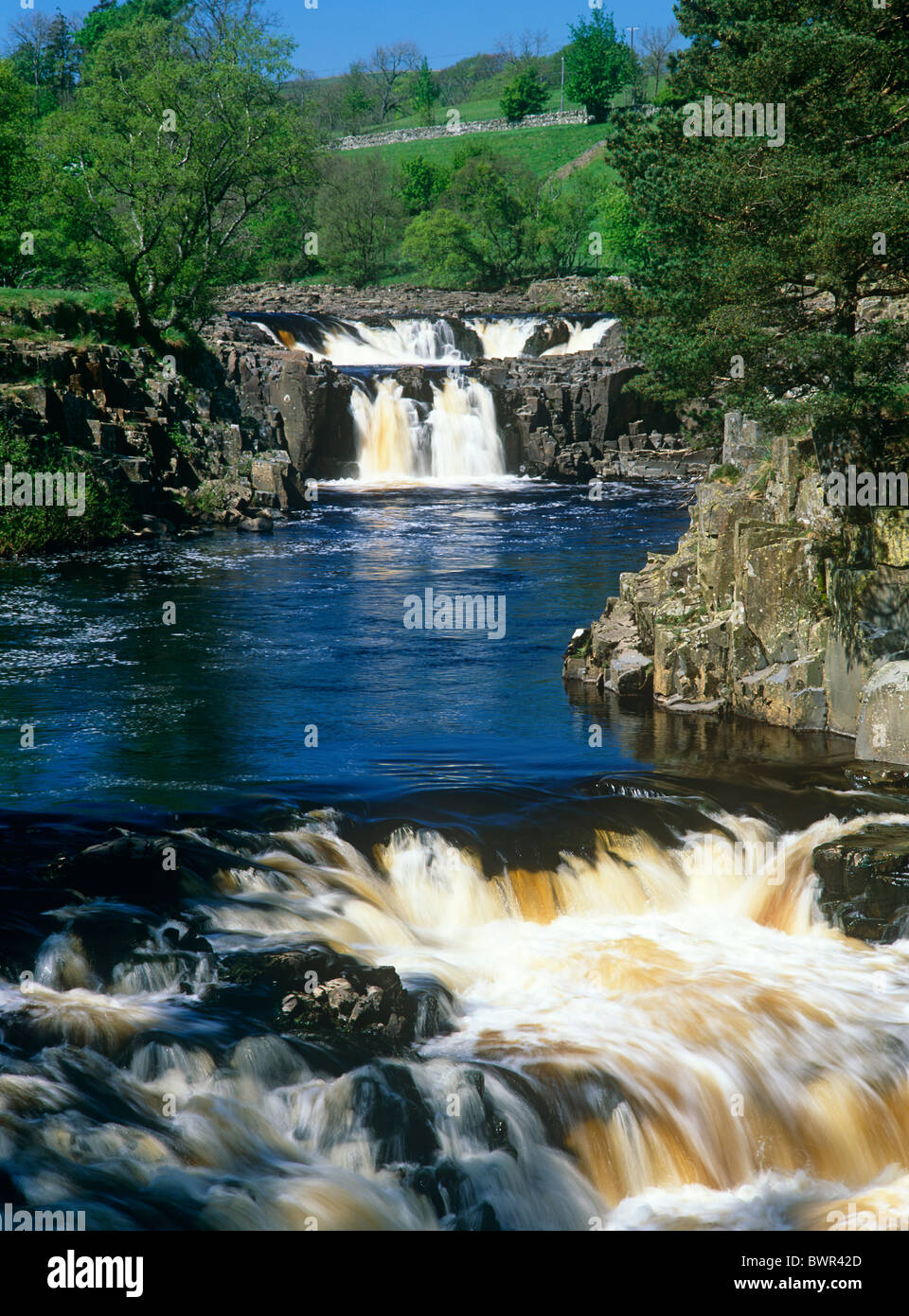 A summer view of Low Force Waterfall and River Tees in Teesdale, County Durham - Stock Image