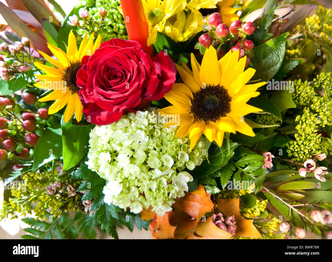 Fall flowers bouquet stock photos fall flowers bouquet stock a fall bouquet of flowers stock image izmirmasajfo