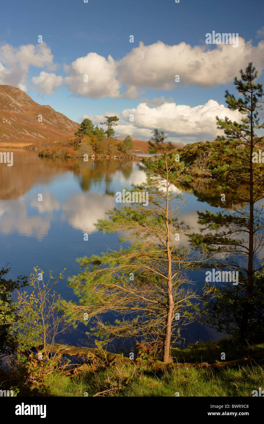 Autumnal afternoon at Llynnau Cregennen lake in Snowdonia Wales UK - Stock Image