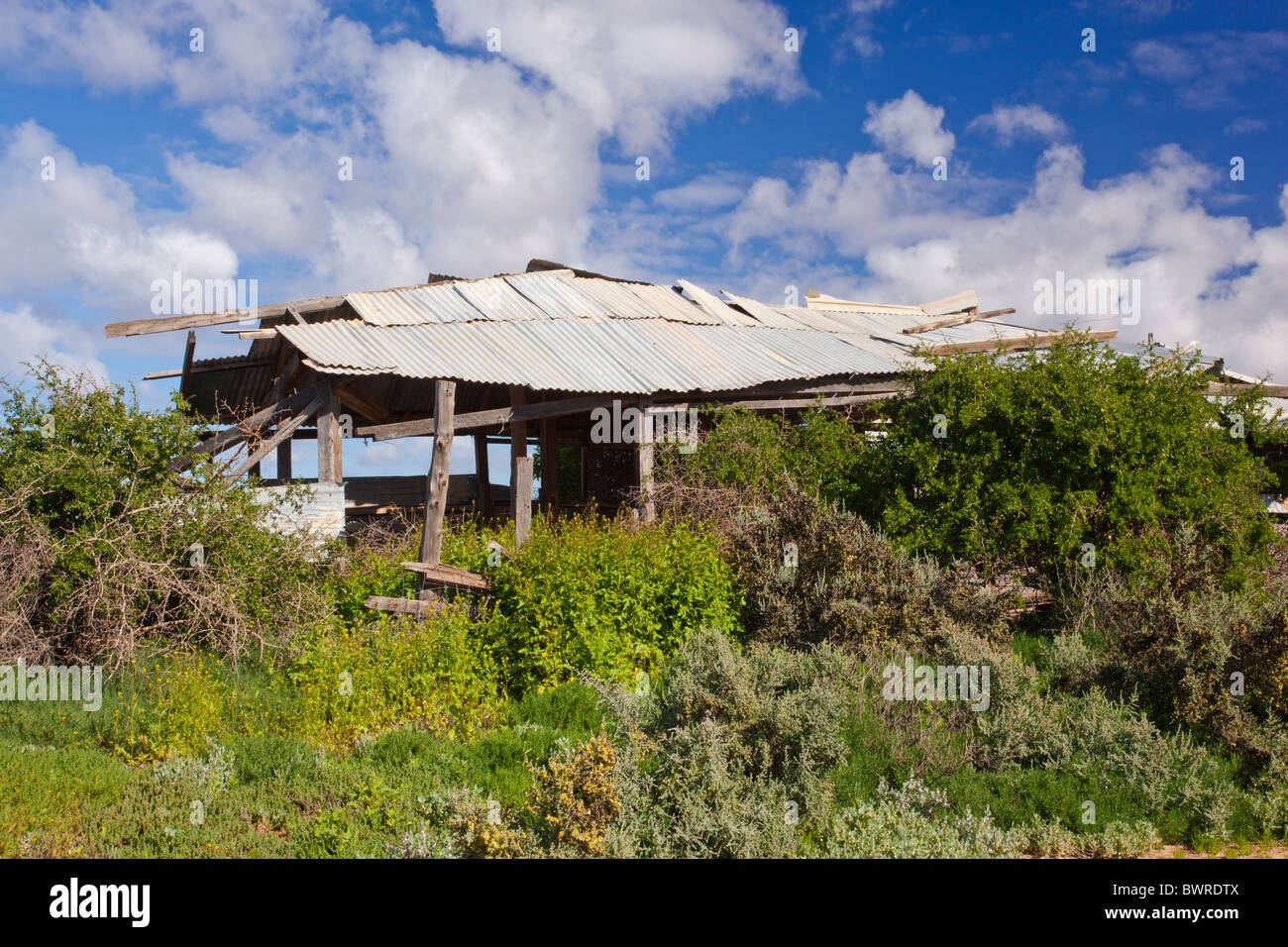 An abandoned homestead on the road from Buronga to Lake Mungo in south west New South Wales - Stock Image