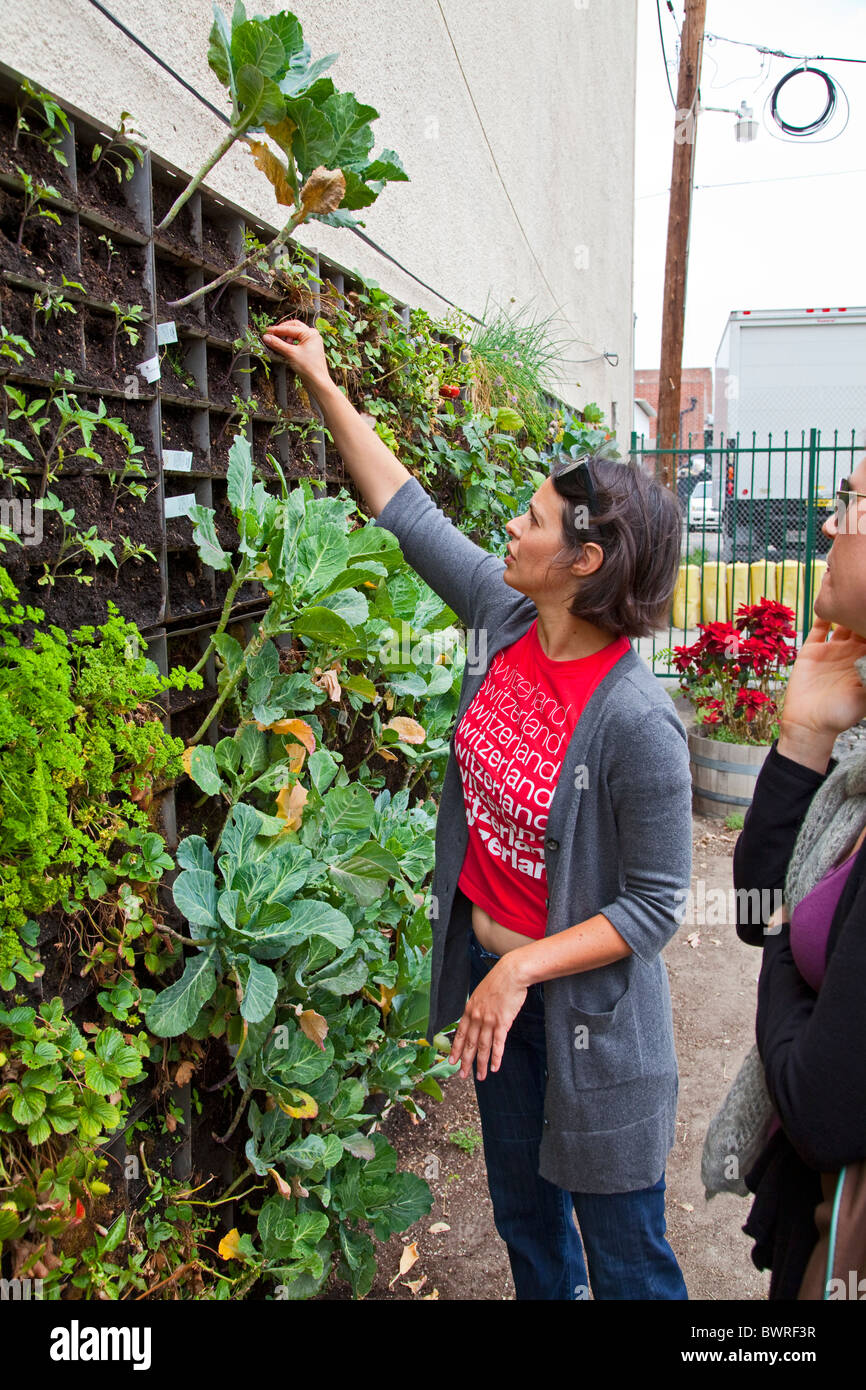 The Edible Garden wall (vertical garden) created by Urban Farming for the Weingart Center on skid row in downtown Stock Photo