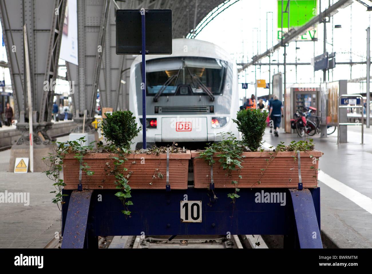 A regional train at a platform, Frankfurt central Station, Frankfurt am Main, Hesse, Germany, Europe - Stock Image