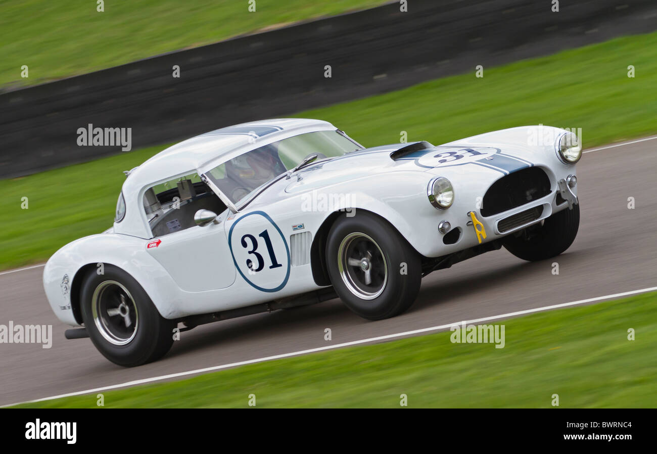 1962 AC Cobra during the RAC TT Celebration race at the 2010 Goodwood Revival, Sussex, England, UK. - Stock Image