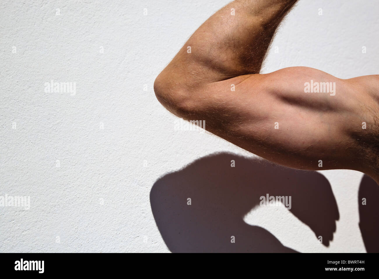 Man bending arm to show well developed biceps and triceps. - Stock Image