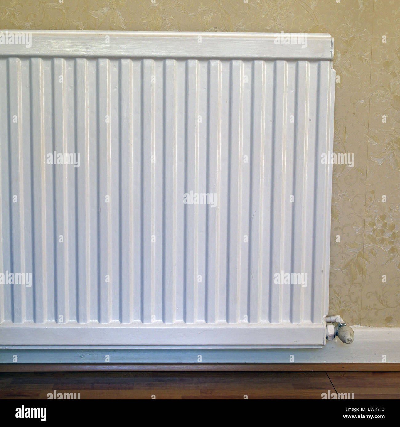 White Painted Domestic Metal Radiator forming part of a central heating system, UK - Stock Image