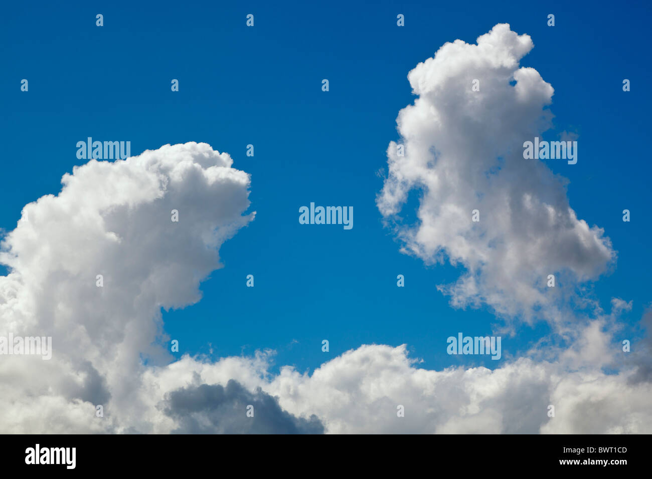 Cumulus clouds billowing against a blue sky - Stock Image