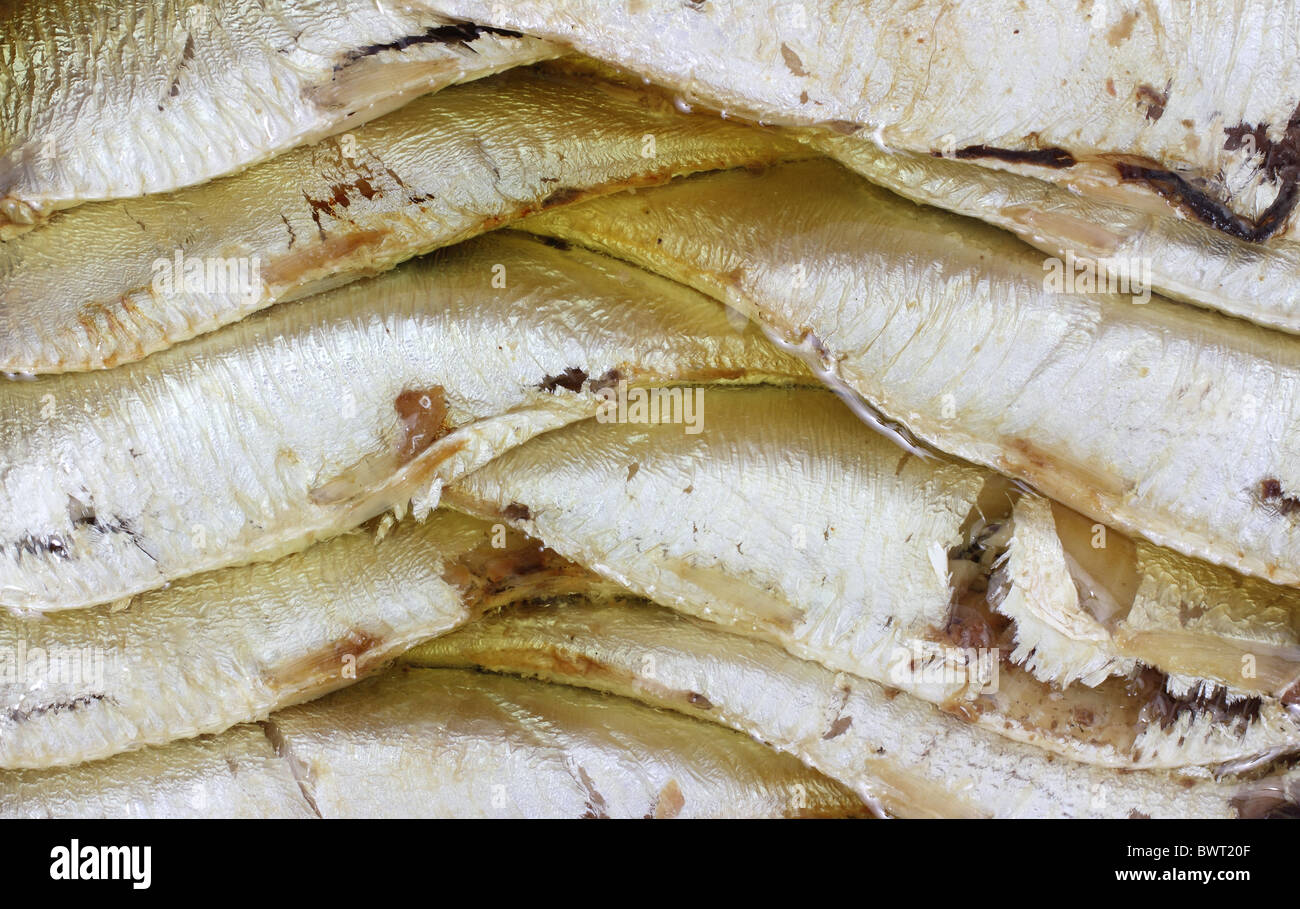 Close view of sprats - Stock Image