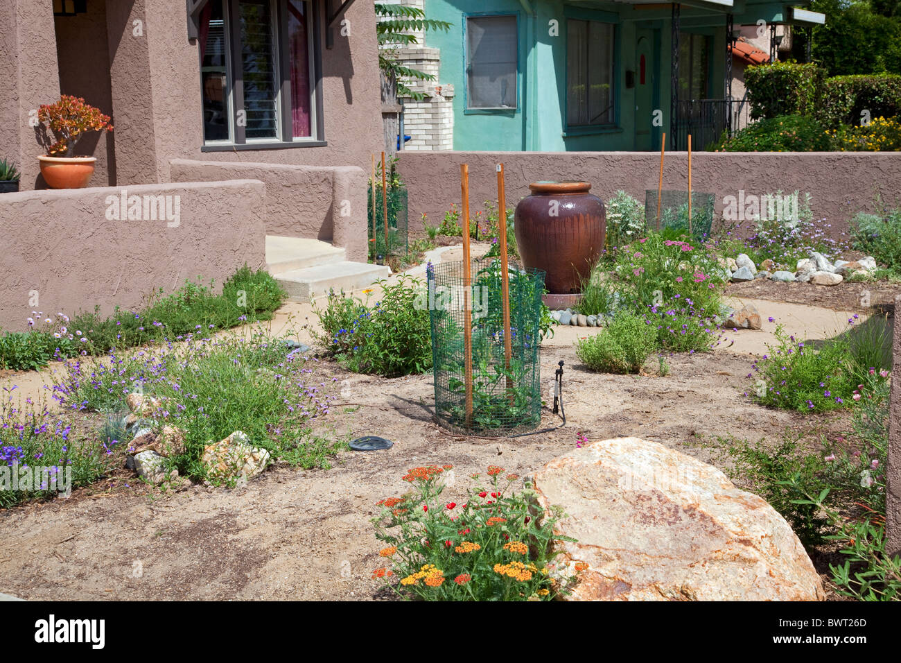 Drought Tolerant Garden, Atwater Village, Los Angeles, California, USA    Stock Image