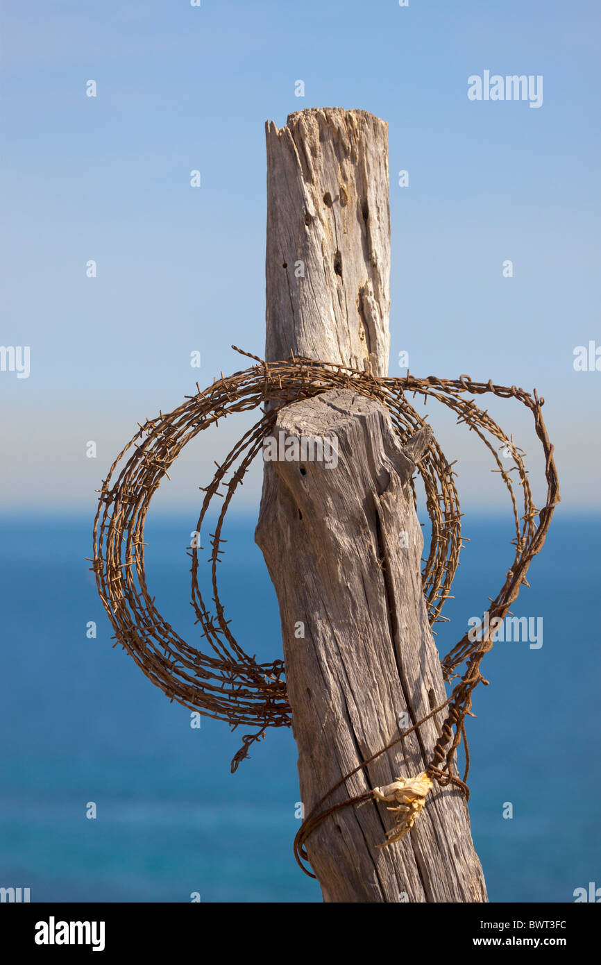 Roll of barbed wire hung on old fencing post. Sea in background. - Stock Image