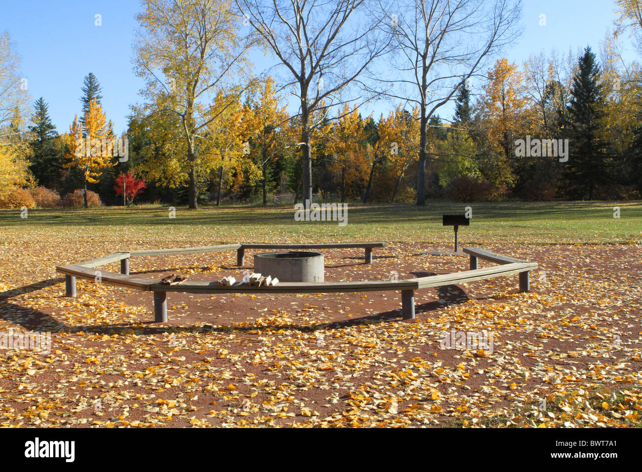 Pleasing Autumn Colours And Park Benches And Picnic Tables In The Caraccident5 Cool Chair Designs And Ideas Caraccident5Info