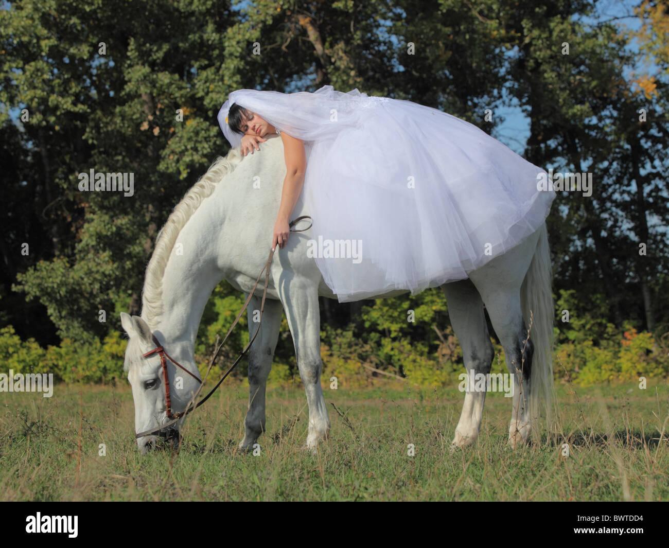 Horse in Wedding Dress
