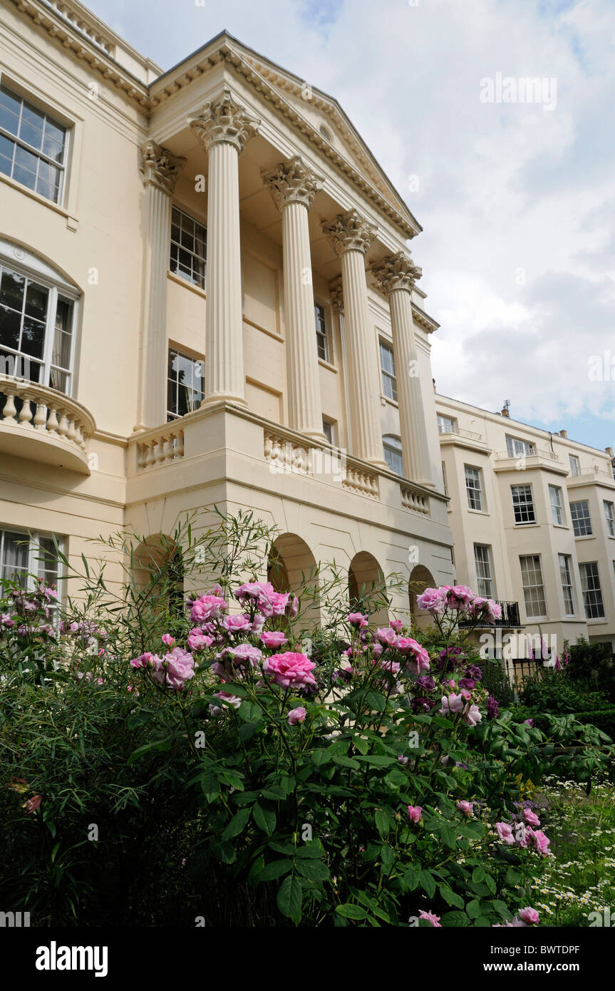 Royal College of Physicians with roses in the forground London England UK - Stock Image
