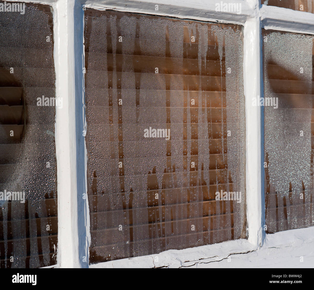 Condensation on a window - Stock Image