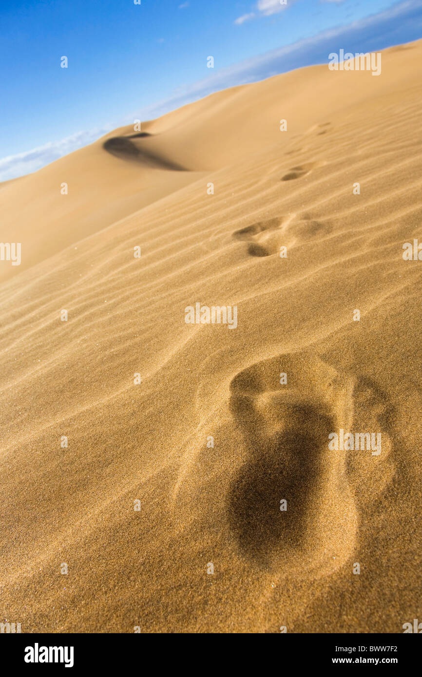 Footprints in the sand dunes. - Stock Image