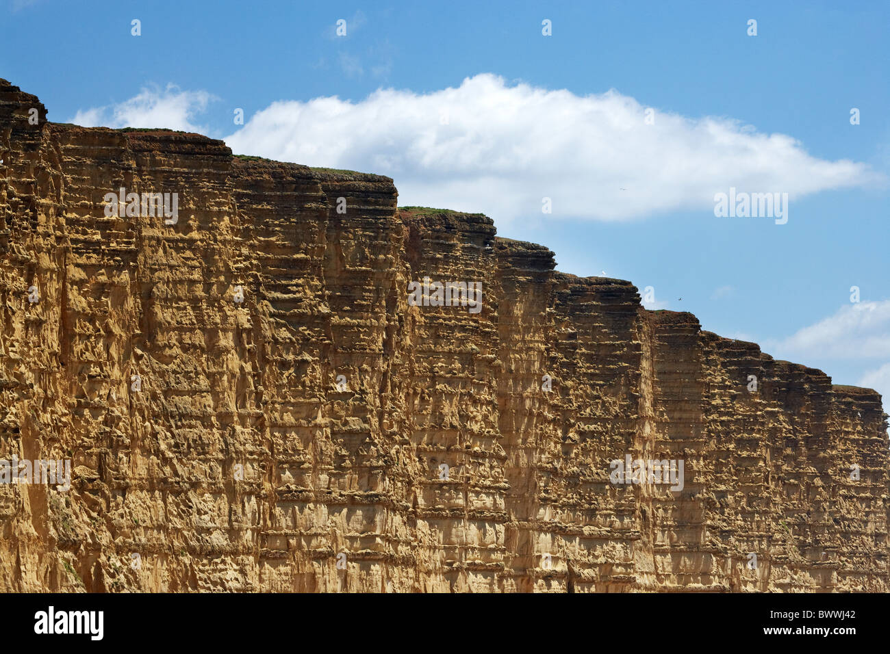 Sedimentary Layers in West Bay Cliffs, Jurassic Coast World Heritage Site, West Bay, Bridport, Dorset, England, - Stock Image