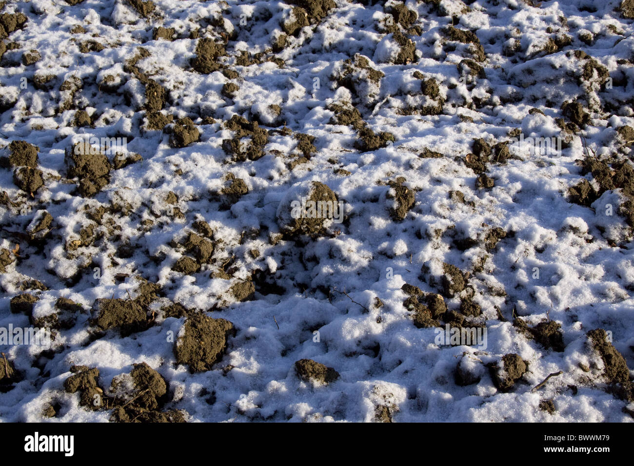 Freshly turned earth with snow - Stock Image