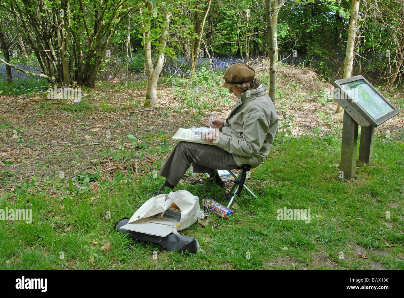 artist woodland wood painting watercolour woodland trust buckinghamshire chorleywood hobby sketching outdoor activity - Stock Image