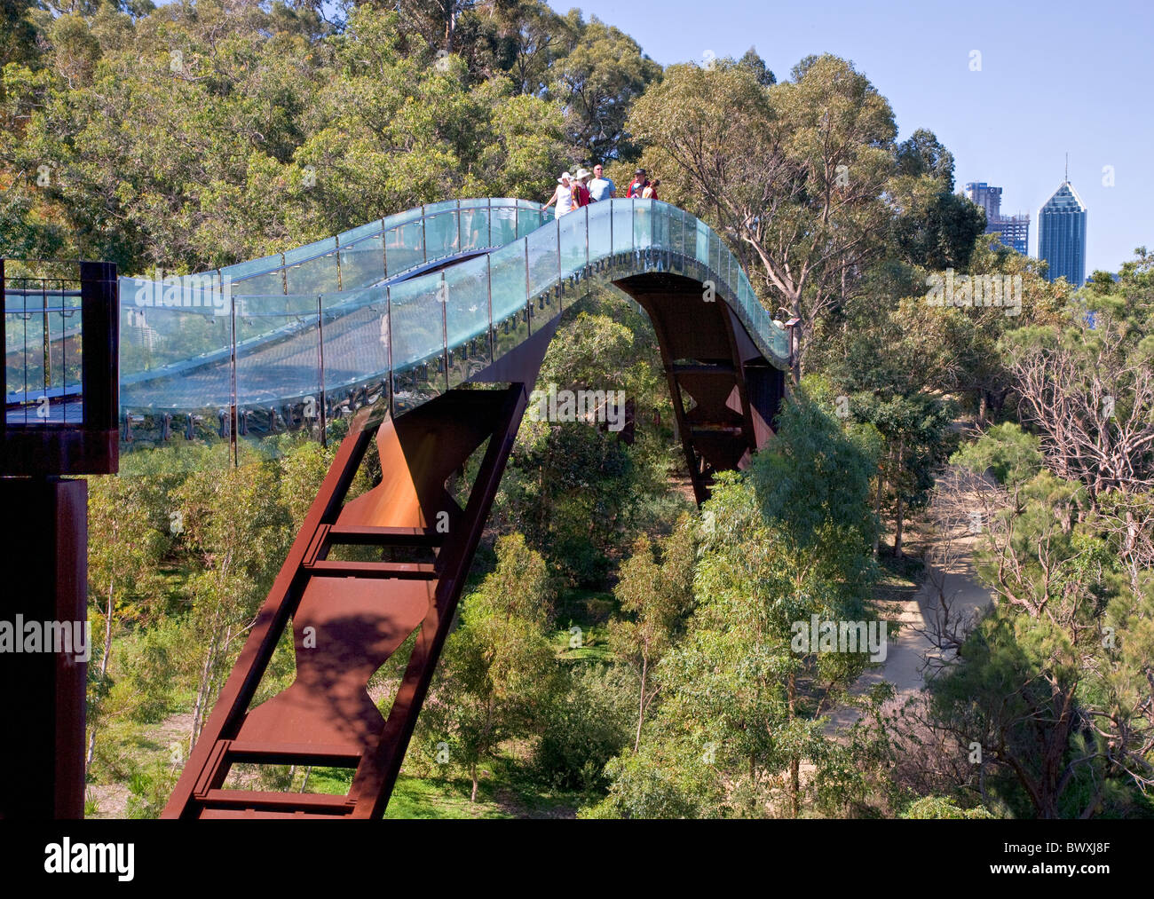 Tree top walk in King's Park Perth Western Australia with a glimpse of the city beyond - Stock Image