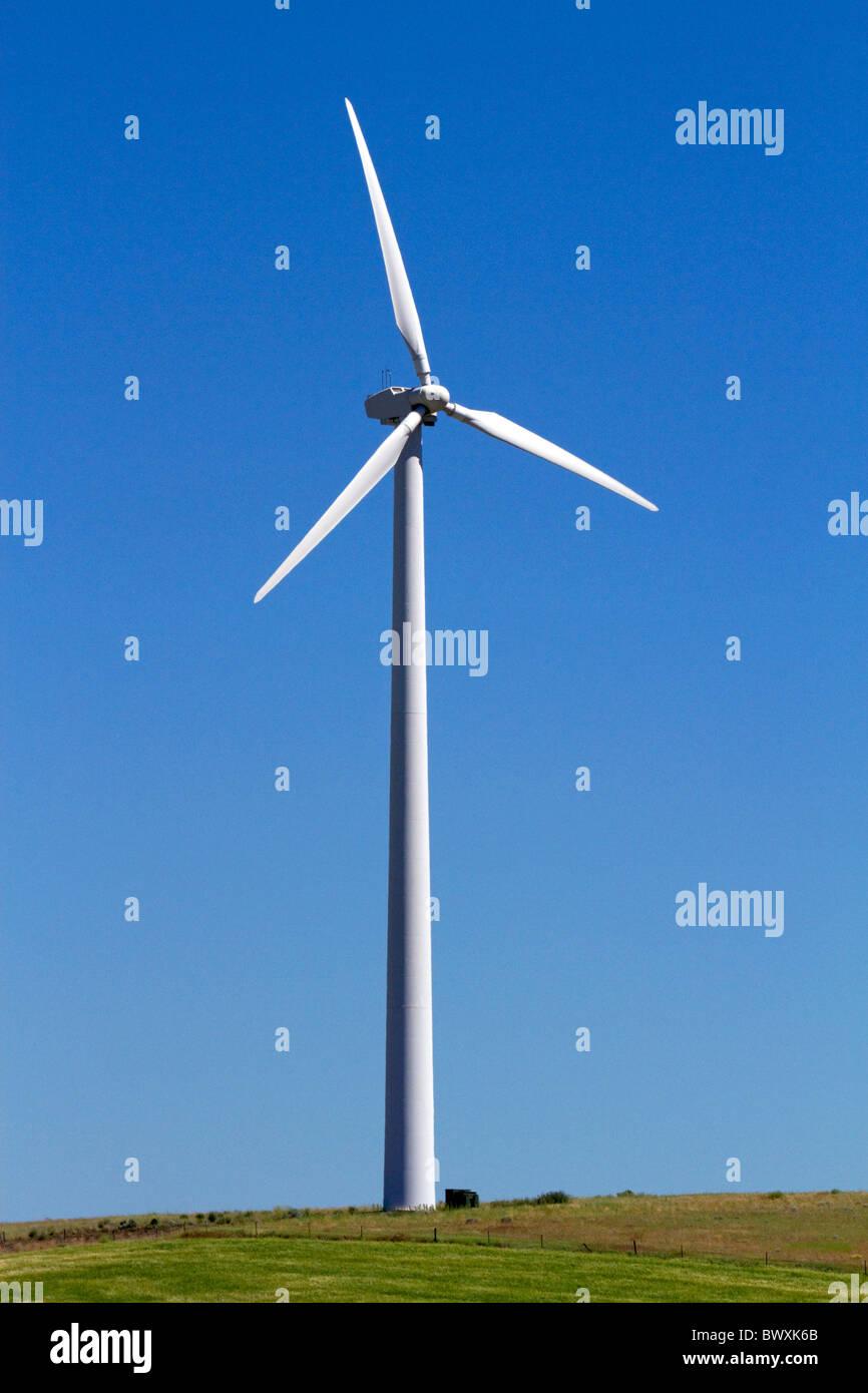 The Condon wind farm located near the town of Condon in central Oregon, USA. - Stock Image